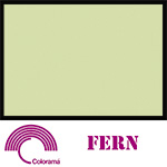 Colorama Paper Roll 135x1100cm Fern 12