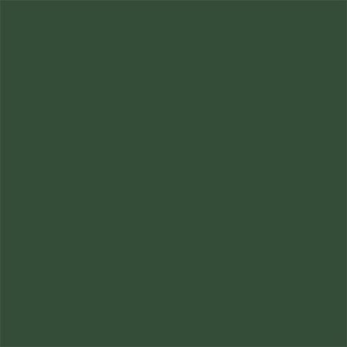 dark-green500